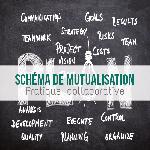 Illustration article Schéma de mutualisation et pratique collaborative